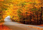 musim gugur turki