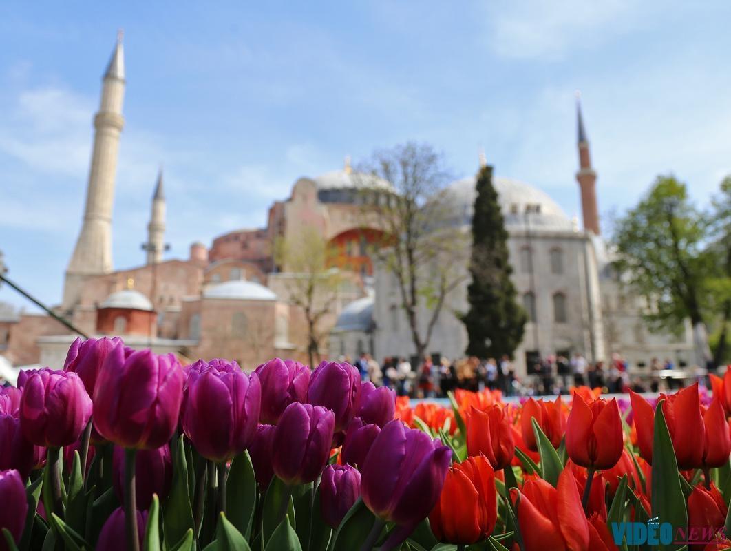 turki tulip festival
