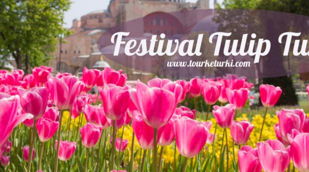 Bunga Tulip di Turki cover