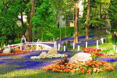 Festival-Tulip-di-Gülhane-Park di Istanbul-Turki