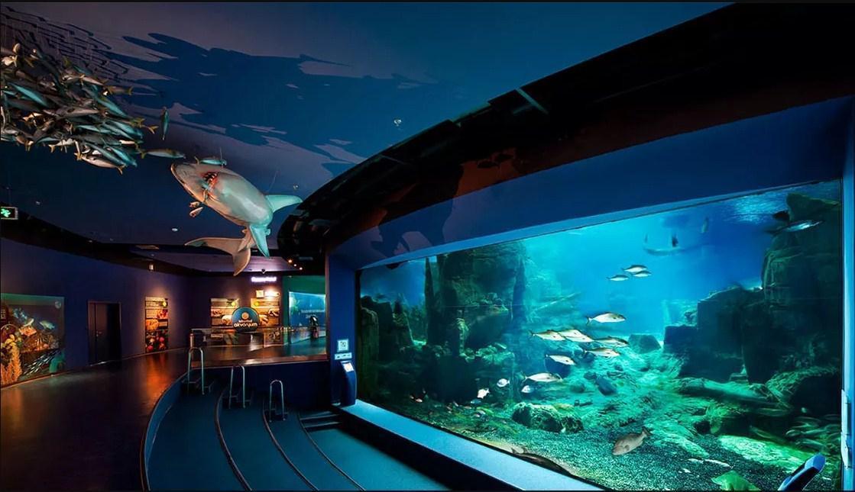 wisata atraksi di istanbul