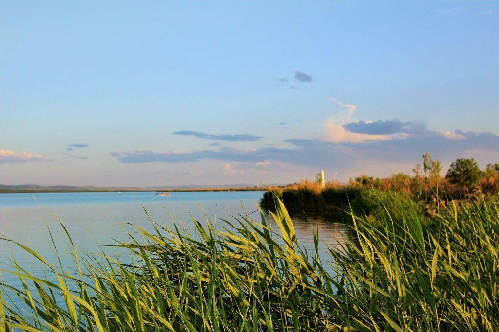 Danau Mogan