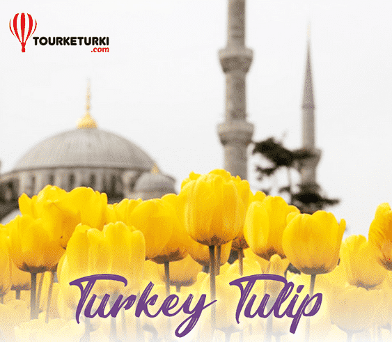 "Paket Wisata ""10 D TURKEY TULIP FESTIVAL"" April 2019"