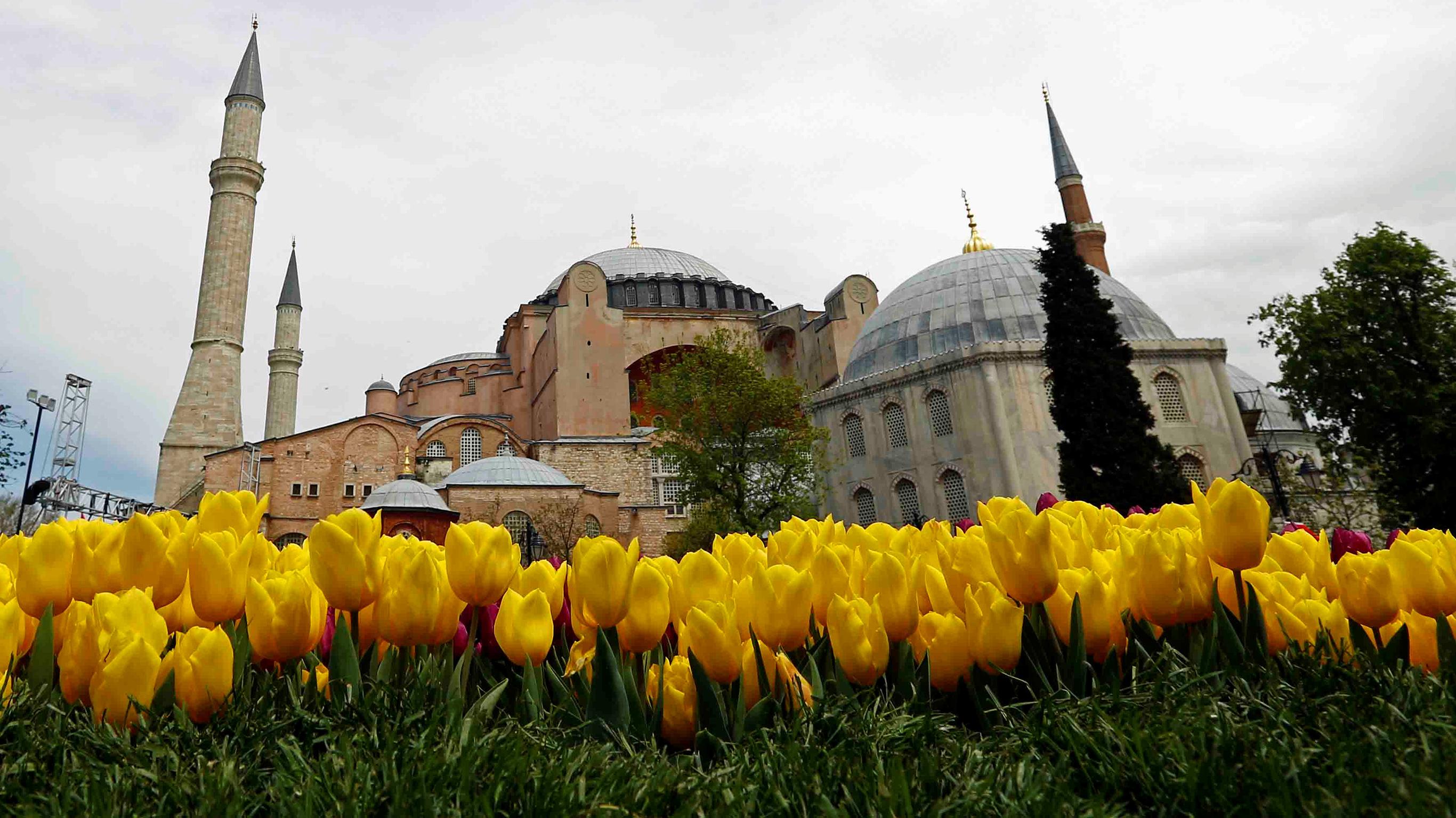 Paket Tour Turki Spring Musim Semi Tulip Festival
